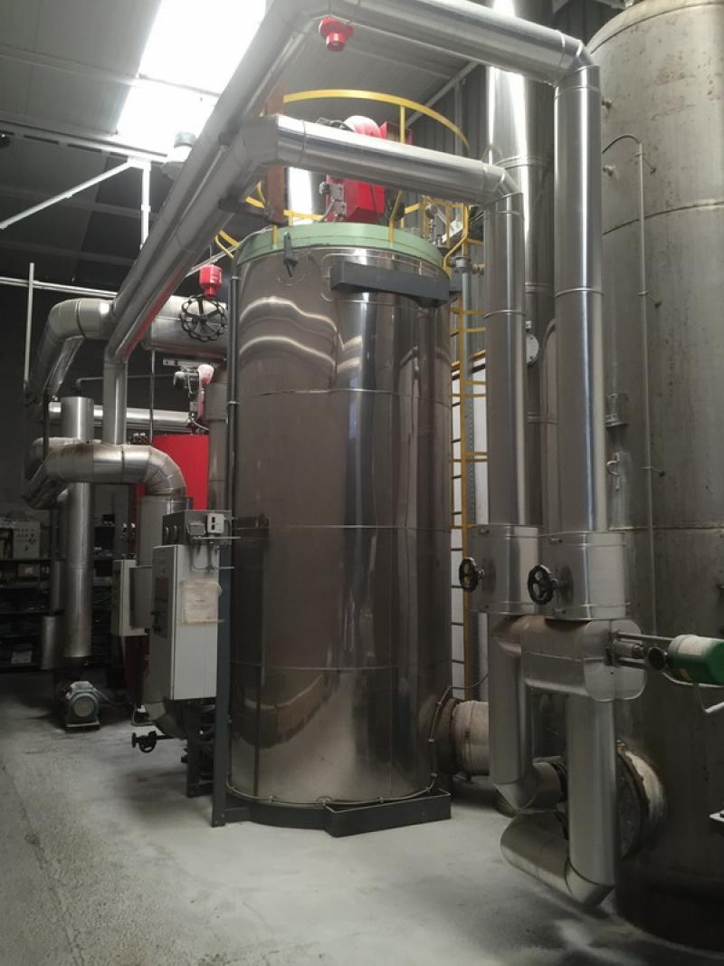 Instalación de aceite térmico compuesta por una caldera de 1.750.000 kcal y otra de 1.200.000 kcal para alimentación de trenes de fritos